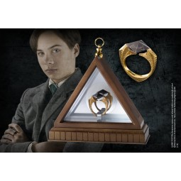 Harry Potter Horcrux Ring Display