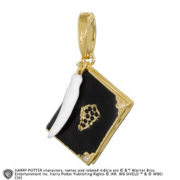 Harry Potter Lumos Charm Tom Riddle's Diary #11