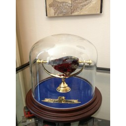 Harry Potter Sorcerer's Stone Display